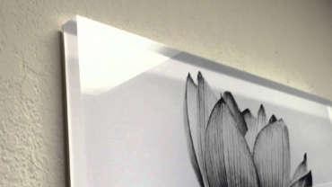Pannelli in Plexiglass